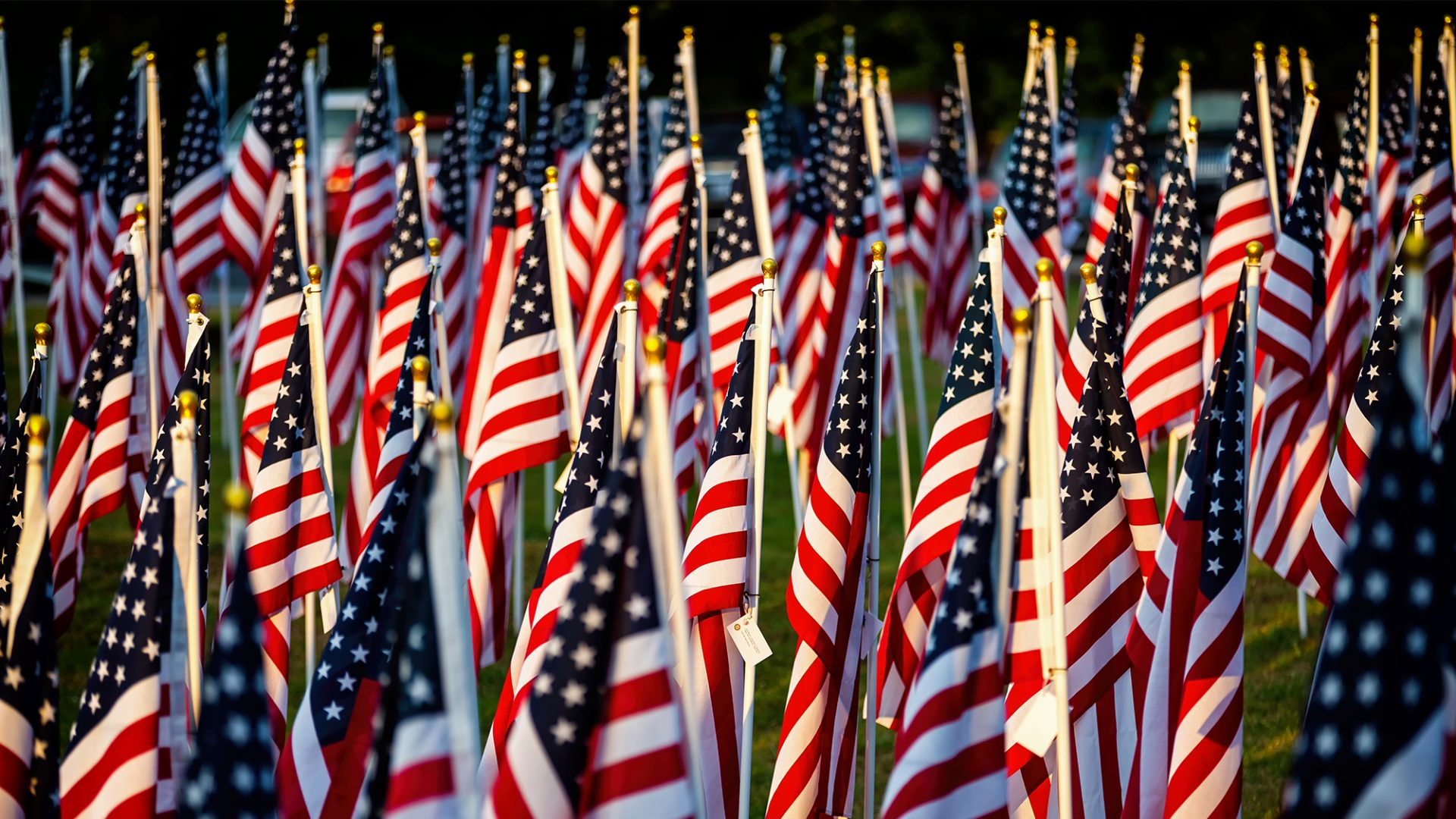 The sun sets on rows and rows of American flags.