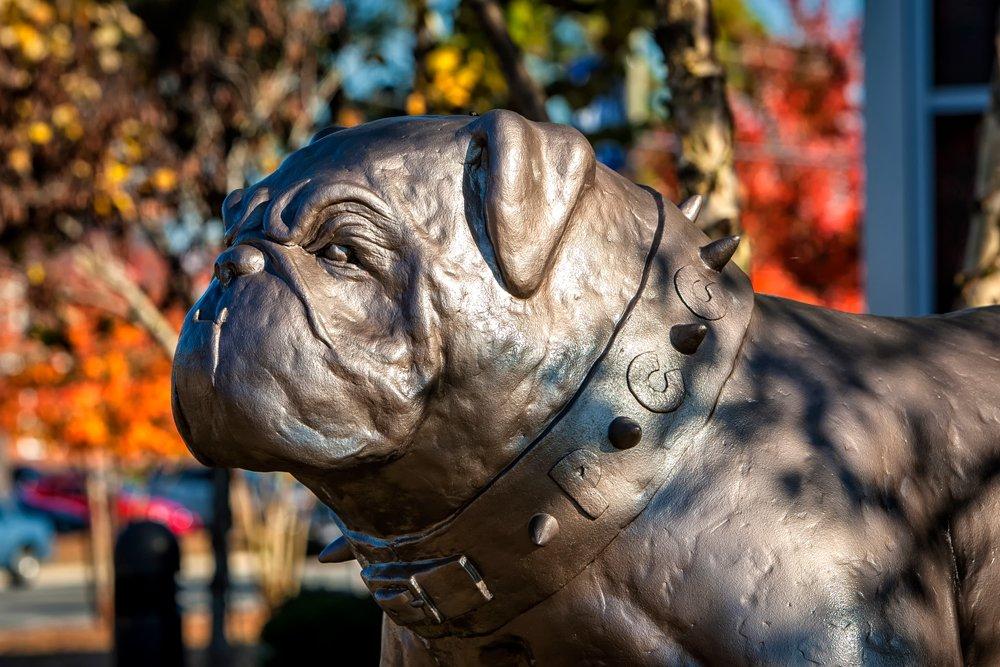 PCC Bulldog Statue