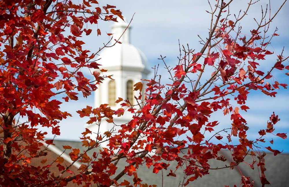 Photo of red fall leaves with Warren Cupola in the background.