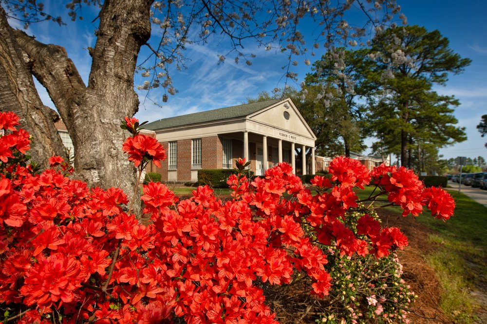 Vernon White Building with red azaleas in the foreground.